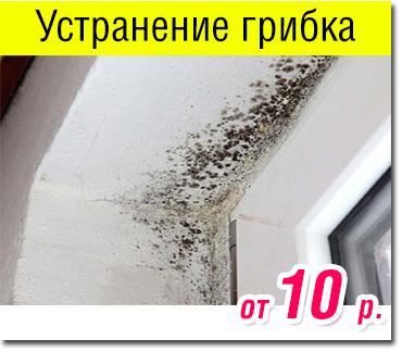 Remont_okon_vitebsk_gribok